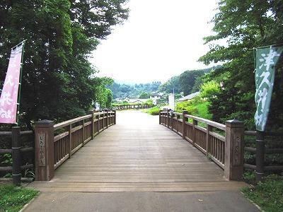 県立津久井湖城山公園(根小屋地区)
