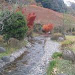 相模川自然の村公園