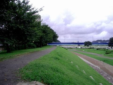 相模川沿い土手(高田橋付近)