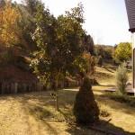 青根山荘 赤蜻蛉