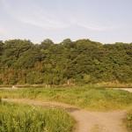 河原(城山町葉山島付近)